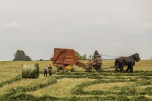 people-field-working-agriculture-large